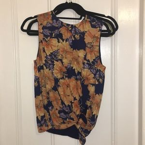 Babaton sleeveless blouse